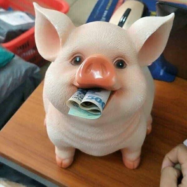 hình ảnh Top 10 shop bán heo nhựa 5D sỉ lẻ giá tốt nhất tại TPHCM - số 2