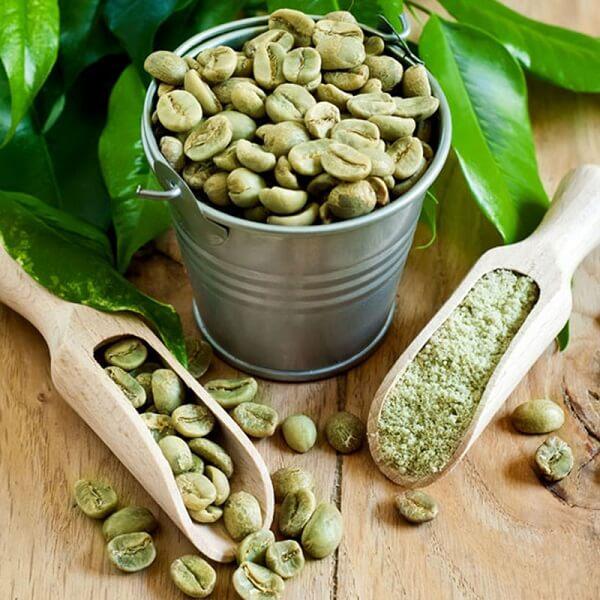 thành phần của thuốc giảm cân Green Coffee Bean
