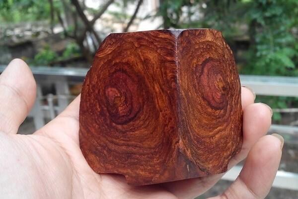 gỗ sưa đỏ