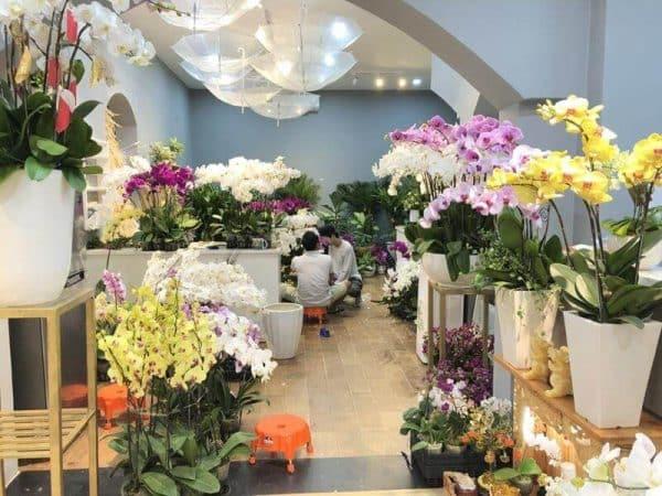 Shop hoa tươi Hà Nội 7