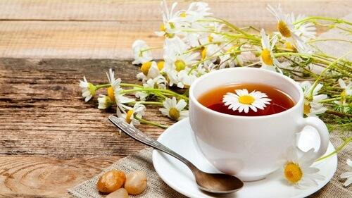 bột hoa cúc