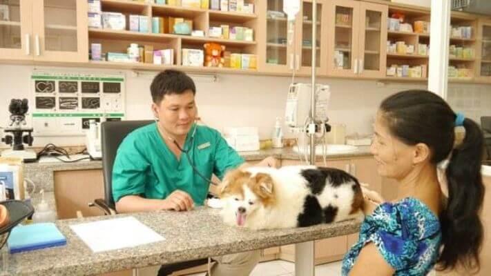hình ảnh Danh sách phòng khám và bệnh viện thú y tốt nhất TP.Hồ Chí Minh - số 8