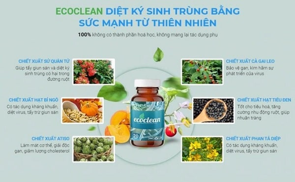 thanh-phan-ecoclean-ecoclean-co-tot-khong