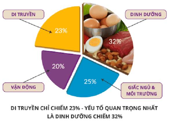 tang-chieu-cao-phu-thuoc-nhung-yeu-to-nao-summeli