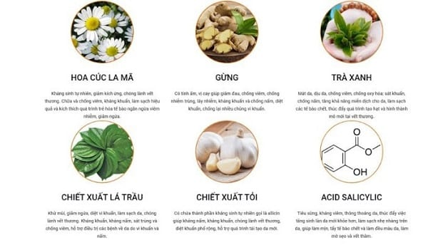 Thanh-phan-Eco-Calm-Eco-Calm-co-tot-khong